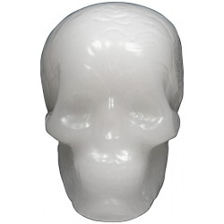 WAX ANDALE SKULL WHITE